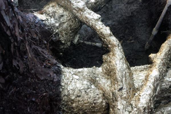 outdoor wood working 10
