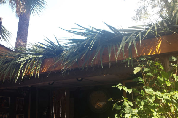 tiki thatched roofs palm roofs canopies 12